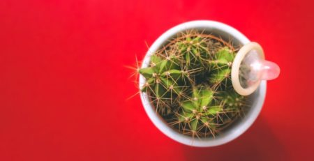 Cactus and a condom