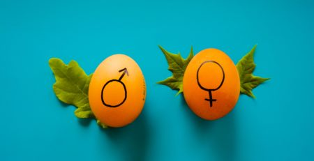 Two eggs with a male and female symbol on them.
